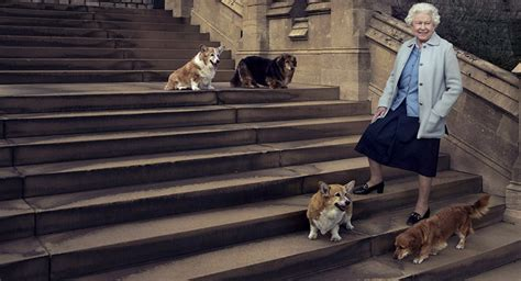 queen elizabeth ii corgis 8 things you probably didn t know about queen elizabeth s