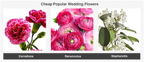 Popular Wedding Flowers by Average Cost Of Wedding Flowers Valuepenguin