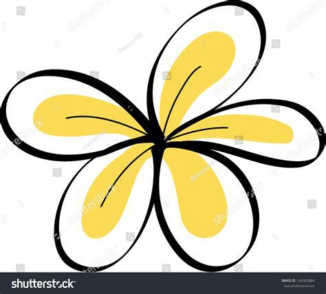 plumeria vector drawing tropical plumeria flowers vector stock vector