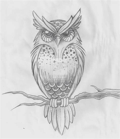 detailed tattoos owl designs tattooed beautiful detailed