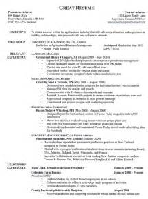 a great resume template top 10 resumes best resume exle