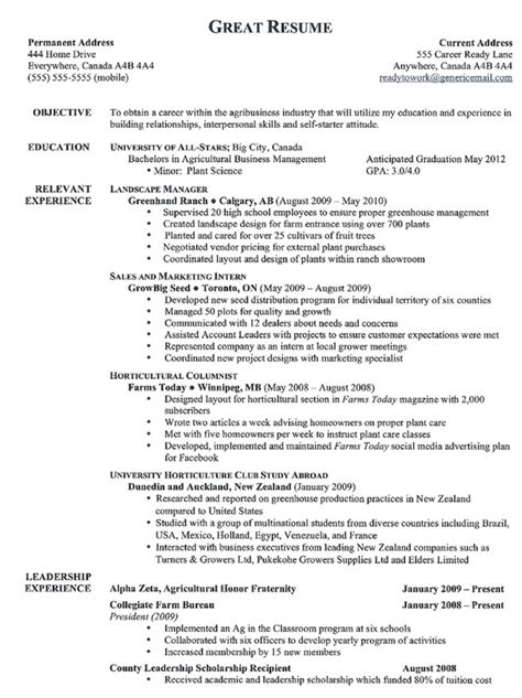 What Is The Best Template For A Resume by Top 10 Resumes Best Resume Exle