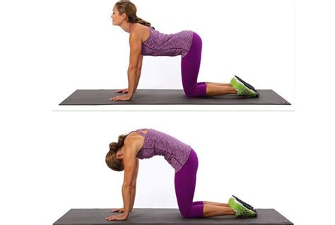 scoliosis exercises   benefits morpheme