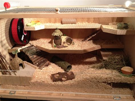custom build your own home build your own hamster cage photo guide babblepie