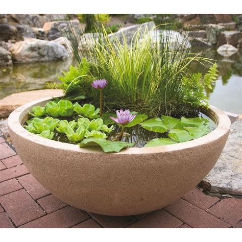 pond aquascape amazon com aquascape 98858 aquatic patio pond water garden 32 inch round european