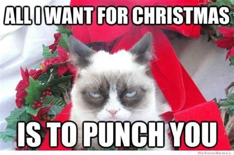 All I Want For Christmas Is You Meme - katte med hatte den sure kat