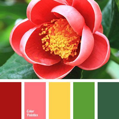 grapefruit color bright yellow color color matching in interior color of