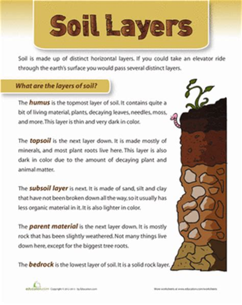 Soil Worksheets For 3rd Grade by Layers Of Soil Worksheet Education