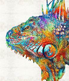 colorful artwork colorful iguana one cool dude