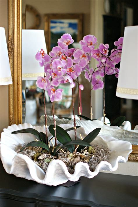 how to decorate a garden orchid flowers clam shell orchid arrangement dimples and tangles