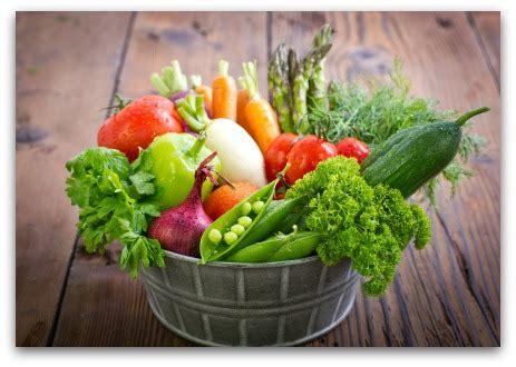 garden planting chart 7 vegetable garden planner