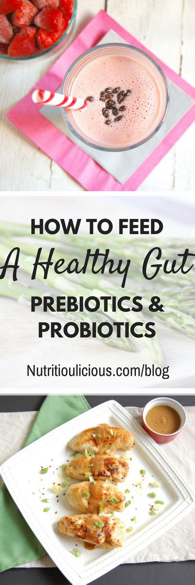 how long should you feed shag feed supplement prebiotics and probiotics your guide to a healthy gut