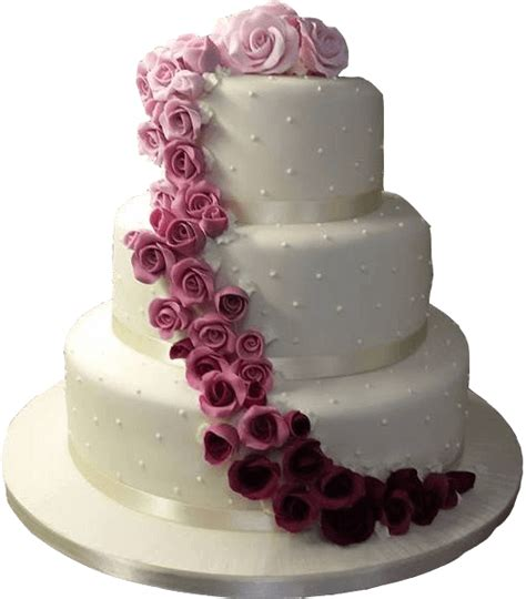 Wedding Cake Equipment by Celebration Station Made Celebration Cakes