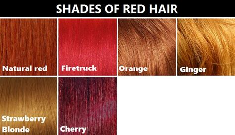 shades of red color chart shades of red hair research pinterest shades of red
