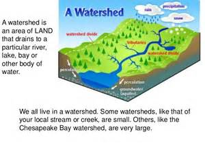 problems with the watershed of chesapeake bay