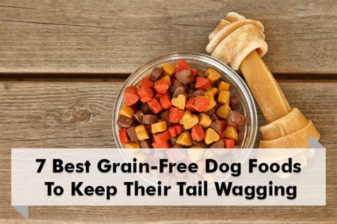 best grain free food 7 best grain free foods to keep their tails wagging big r