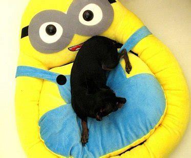 minion bed minion pet bed