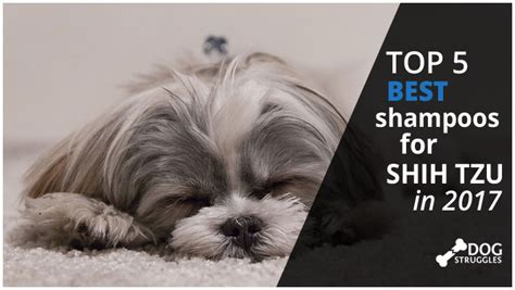 shih tzu conditioner top 5 best shoos for shih tzu in 2017 dogstruggles