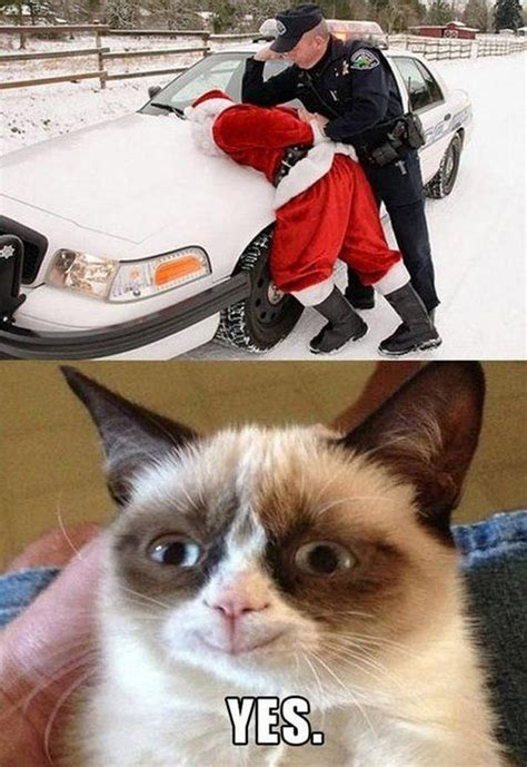 Grumpy Cat Yes Meme - funny santa pictures 08