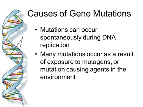 including mutations non disjunction ppt