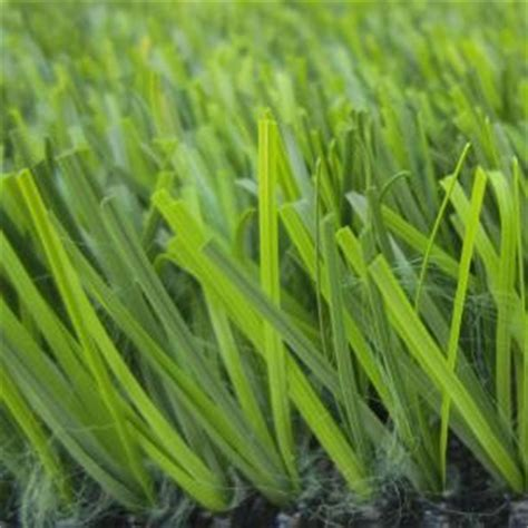 realgrass by real grass lawns standard artificial grass