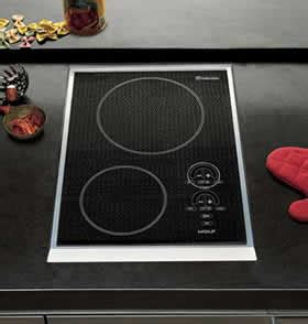induction cooking indian recipes wolf induction cooktop treehugger