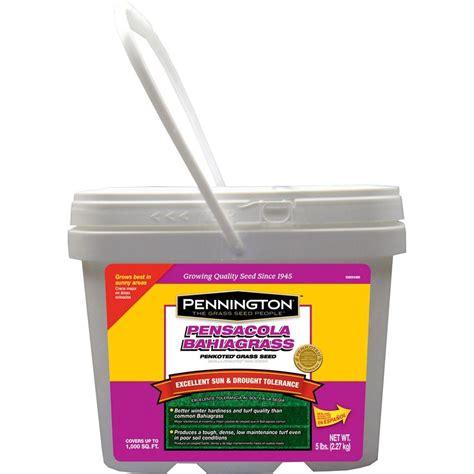 pennington 5 lb pensacola bahiagrass grass seed 100081058