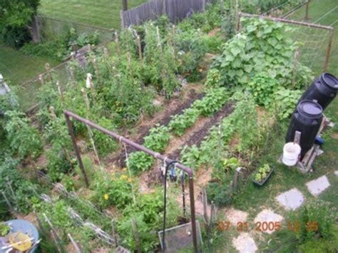 Small Backyard Vegetable Garden Ideas Backyard Vegetable Garden Design Design Bookmark 15403