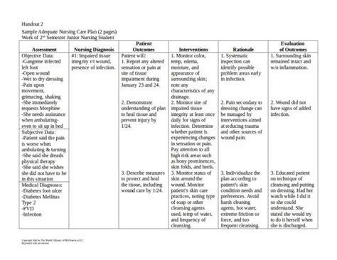 15 Patient Care Plan Template Pdf Word Sle Templates Care Plan Templates Term Care