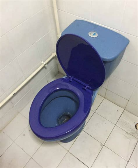 seat cover for toilet bowl replace toilet singapore reliable wc replacement service