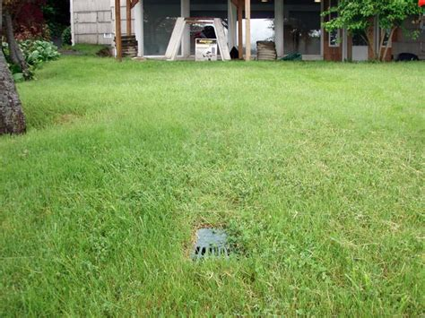 sump pump backyard drainage outdoor drainage solutions for niagara falls buffaho