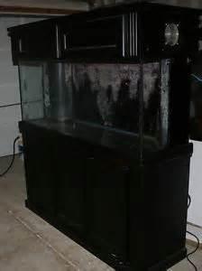 120 Gallon Aquarium Canopy by 29 Gallon Reef Tank Photos On Popscreen