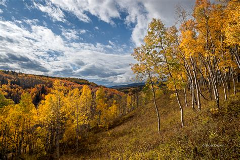 Landscape Photography Colorado Ohio Creek Road Gunnison National Forest Bob Dent