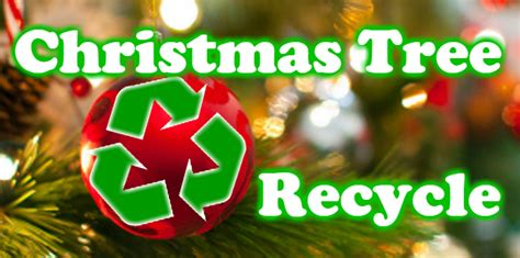 recycling your christmas tree empower la