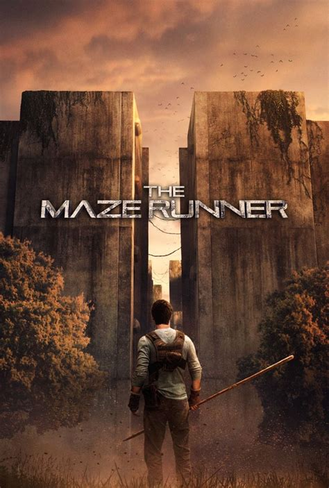 maze runner fan film 33 best the maze runner więzień labiryntu images on