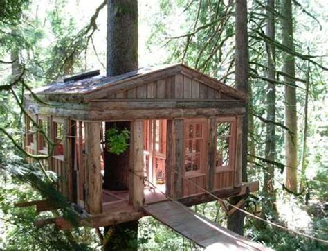 tree house window ideas modern tree house designs bring back romantic backyard ideas