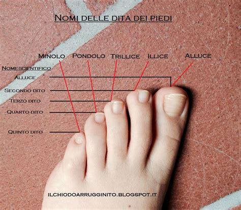 dita nel sedere quali sono i nomi delle dita dei piedi il chiodo
