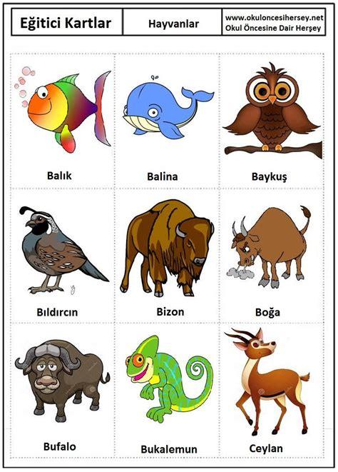 pin en sevdi i oyun minik hayvanlar ve bunlar kendi yazd okul 246 ncesi eğitici kartlar flash card hayvanlar 2 jpg