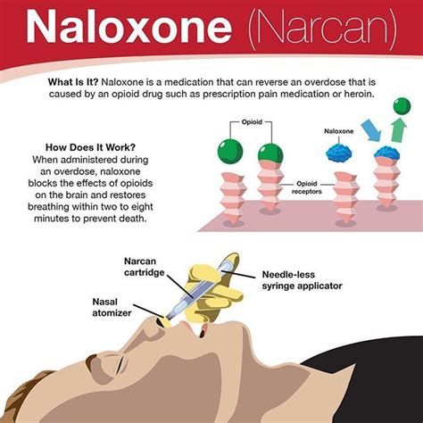 Emergency Detox Centers Near Me by Best 25 Narcan Ideas On Cardiac Nursing