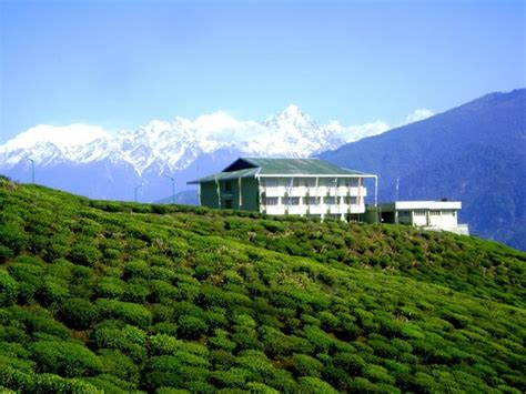 sikkim hotels compare  hotels  sikkim