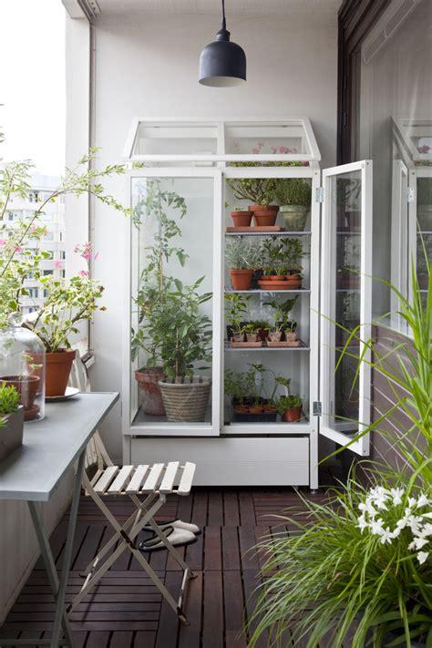 indoor greenhouses  joy  plants