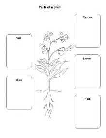 which parts of the plant do we eat ingridscience ca