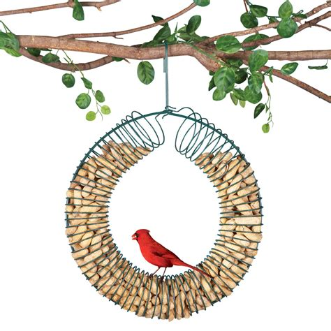 collections etc hanging peanut wreath bird feeder ebay