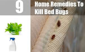 how do you kill bed bugs apps directories