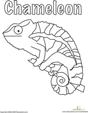 a color of his own coloring page color the chameleon