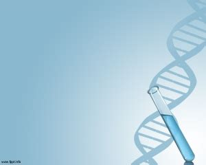 Dna Ppt Template And Templates On Pinterest Dna Powerpoint Template