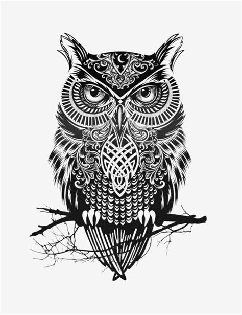 owl tattoo black and white owl illustration in black white black and white
