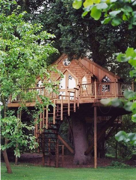 amazing tree houses 17 best images about tree houses on pinterest trees