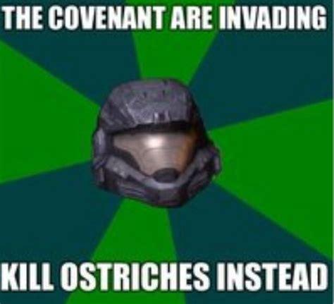 Yassss Meme - halo reach meme video games pinterest halo aliens