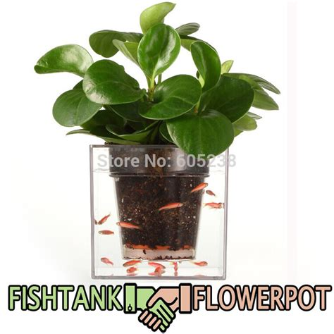 self watering plant pots clear tube plant pot flower pot self watering planter